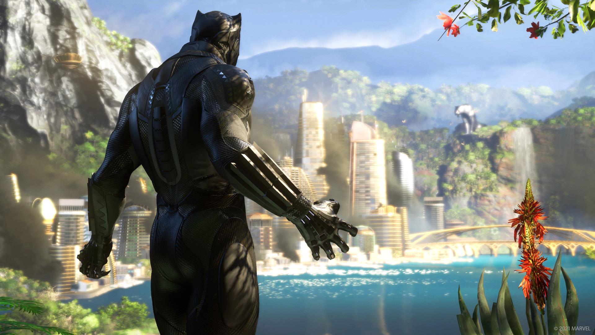 Black Panther Art 2